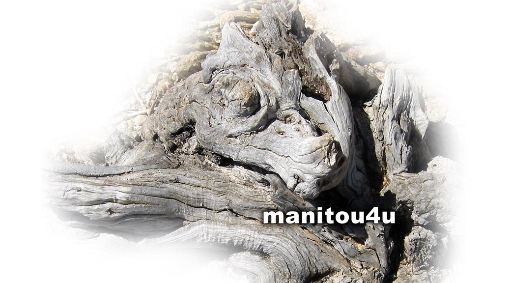 aracube framework - manitou4u
