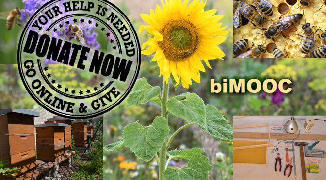 biMOOC – Spenden